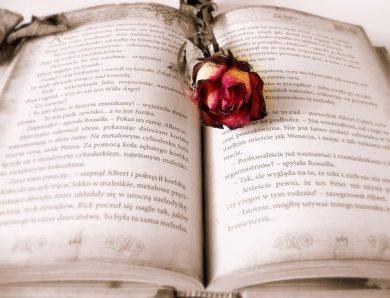 Quelques romans d'amour à lire absolument