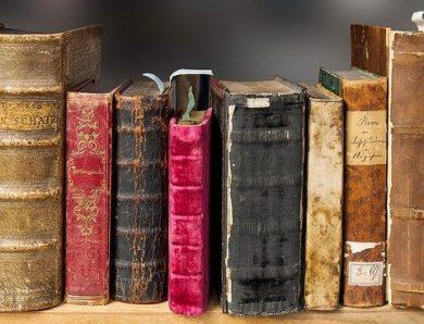 3 romans policiers à acheter absolument